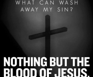 if we say we have no sin blood of jesus cleanseth us from all sin